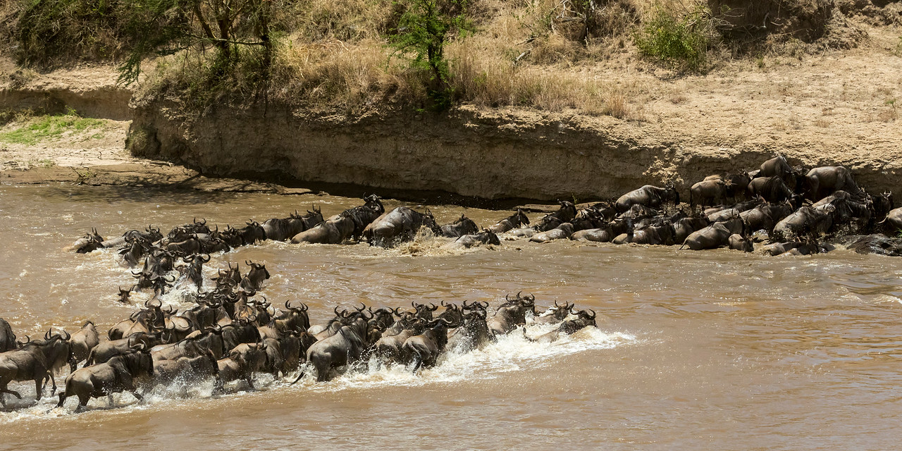 African great wildernesses